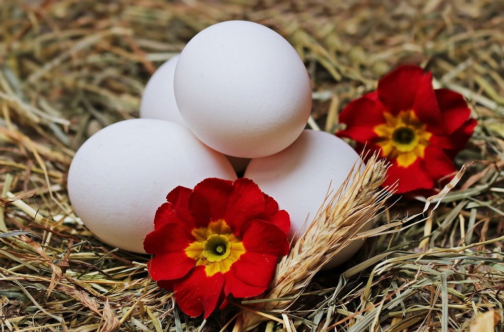 Mali saveti za velike dame: Kako skuvati jaje – velika mudrost!