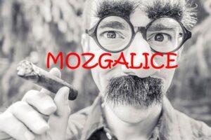 Mozgalice i zezalice